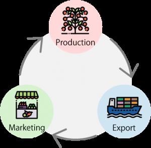 Cycle diagram en